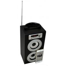 Акустическая система KS-is Fiacoo (KS-219) Bluetooth/FM радио